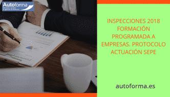Inspecciones 2018 formación programada a empresas. Protocolo actuación SEPE