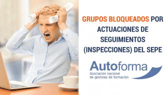 Grupos bloqueados por actuaciones de seguimientos (inspecciones) del SEPE