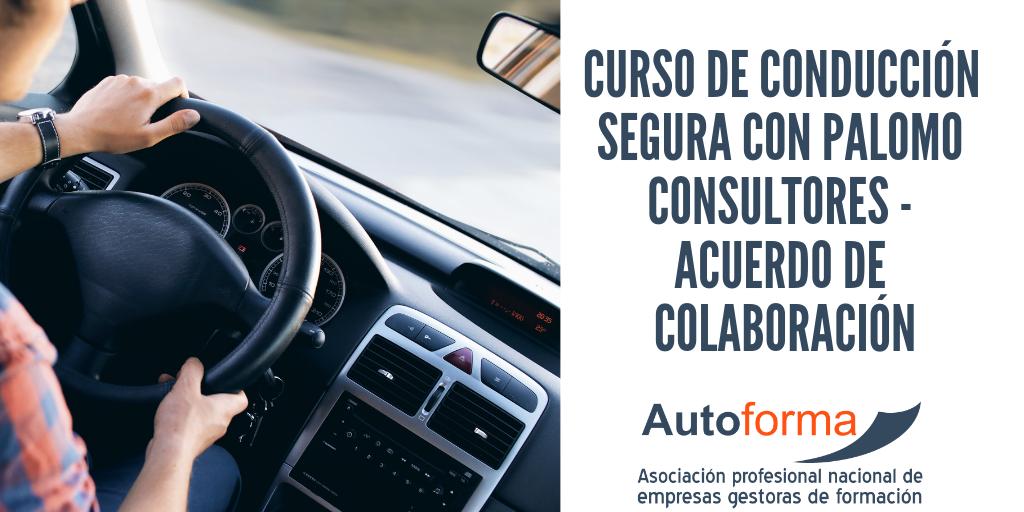 Curso de conducción segura con Palomo Consultores – Acuerdo de colaboración